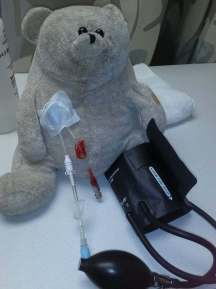 white bear with IV and BP